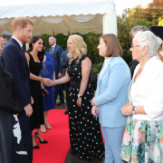 Meeting the Duke and Duchess of Sussex
