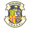 Official National Amateur Karate Association of Ireland