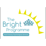 BRIGHT Programme